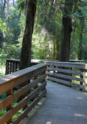 Williamson-Park-Boardwalk-280x400