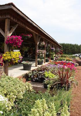 mcarthur-farm-280x400